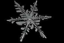 220px-Snowflake_Detail