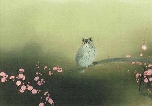 kimono-kitai_003240_5