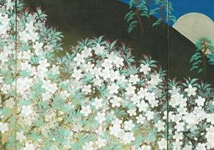 kimono-kitai_003246